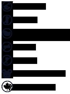 Que signifient les icônes?